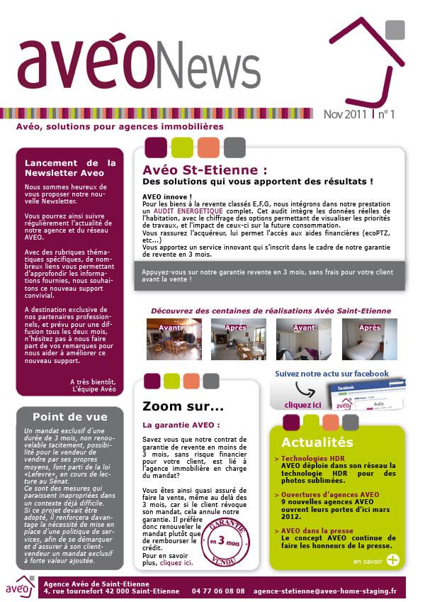 lancement de la newsletter av onews actus et infos home staging av o. Black Bedroom Furniture Sets. Home Design Ideas